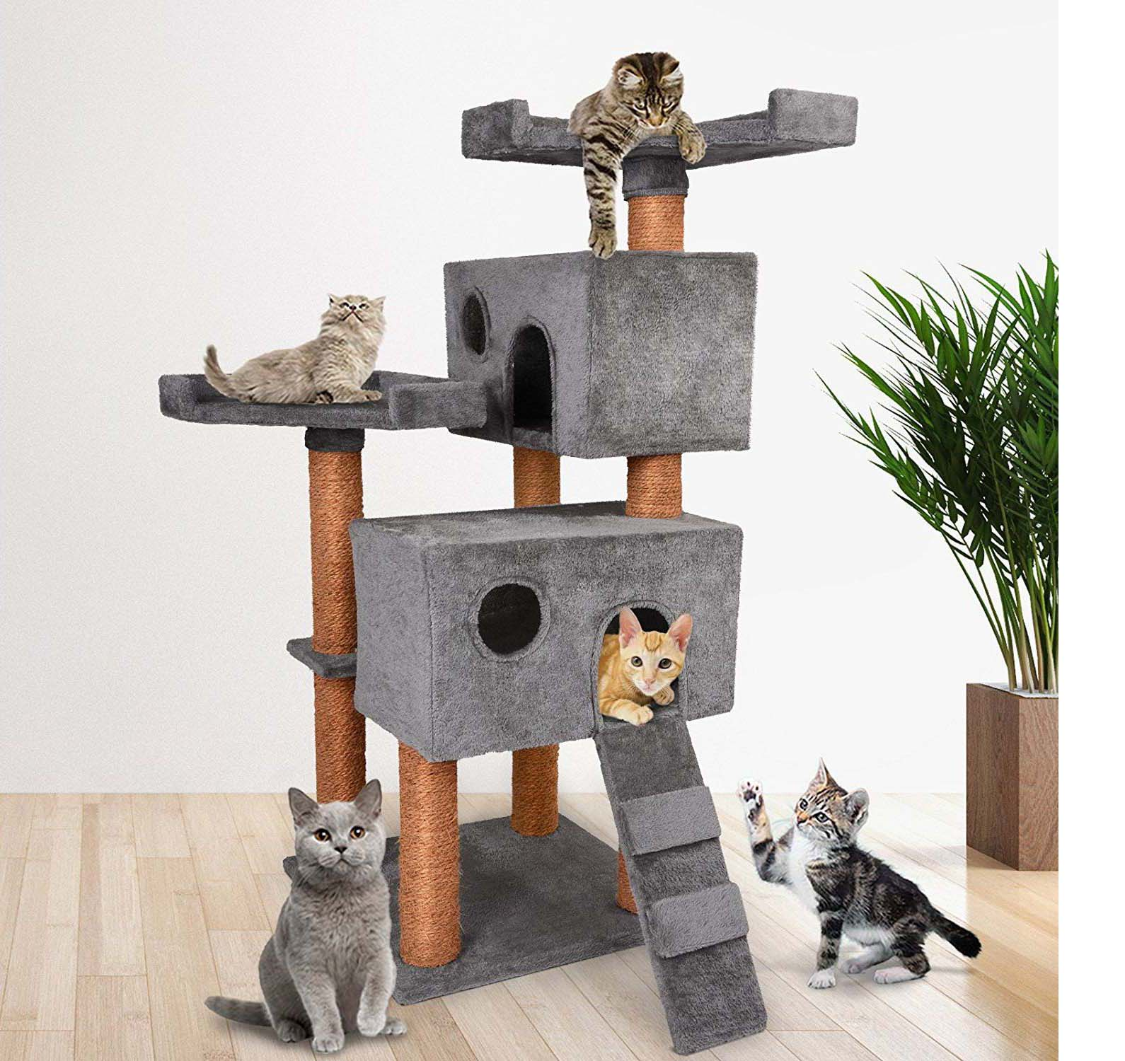 animalerie-arbre-a-chat