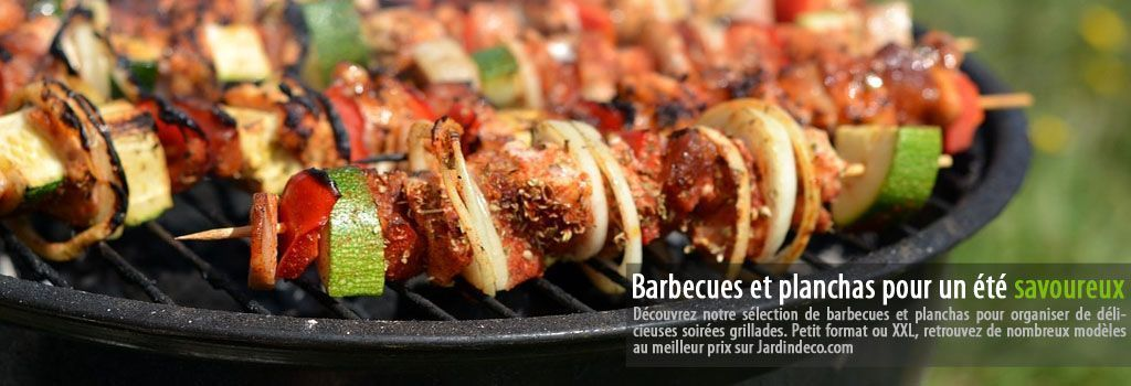 Barbecue et plancha sur Jardindeco