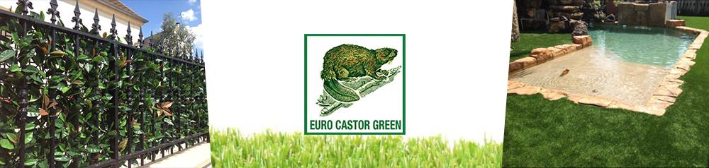 euro castor green sur. Black Bedroom Furniture Sets. Home Design Ideas