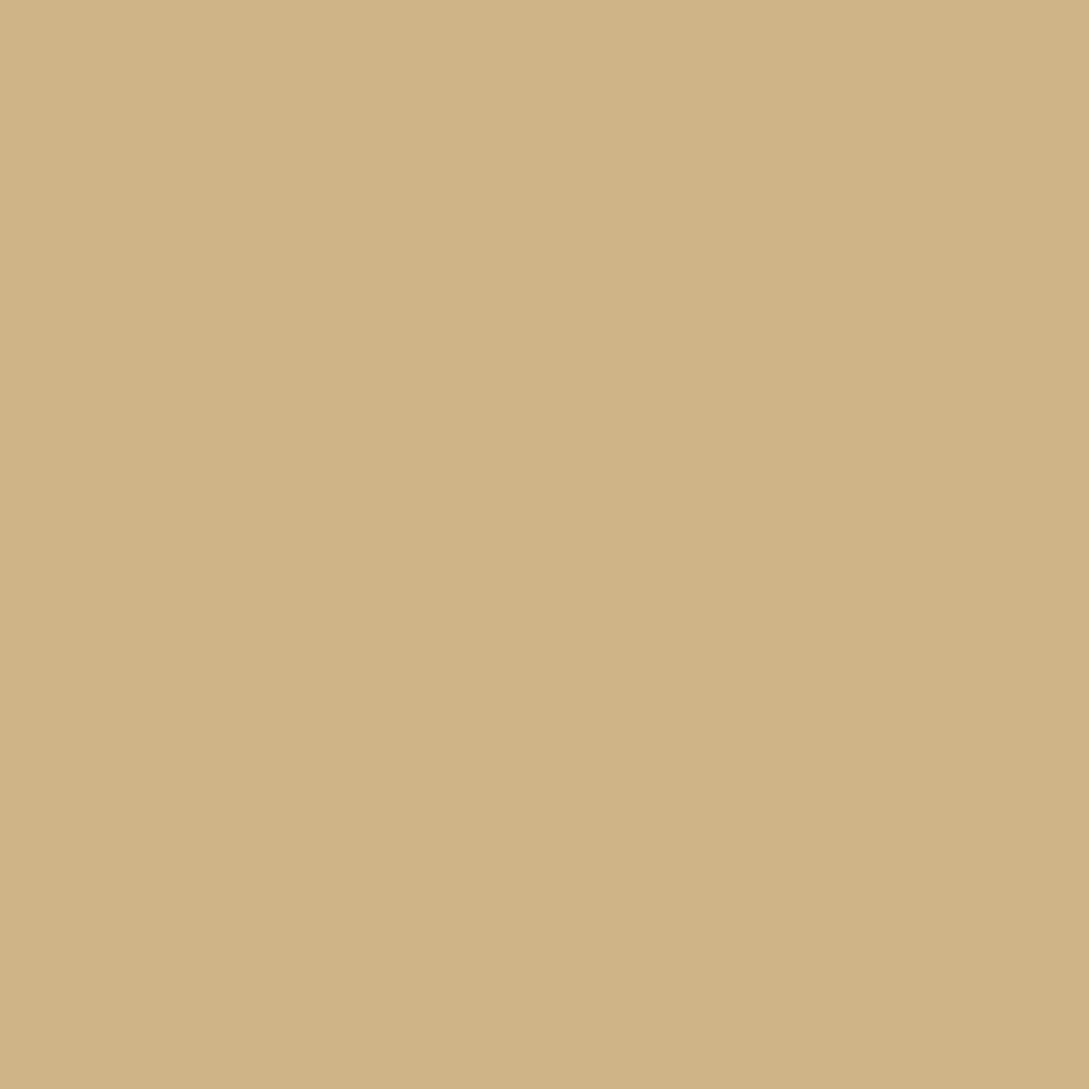 Peinture beige pour meuble en bois brut 1 litre peinture bouchard peintures sur for Peinture pour meubles