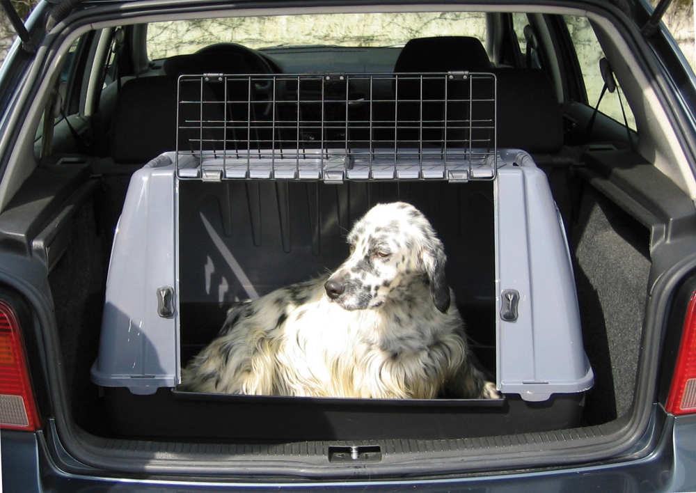 cage de transport pour chien small. Black Bedroom Furniture Sets. Home Design Ideas