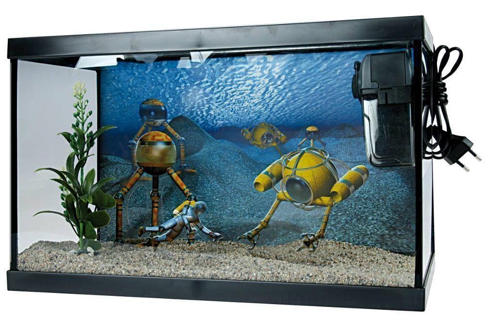 animalerie aquarium jardindeco