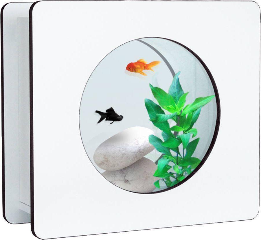 Aquarium nano fashion 6 litres for Acheter aquarium boule
