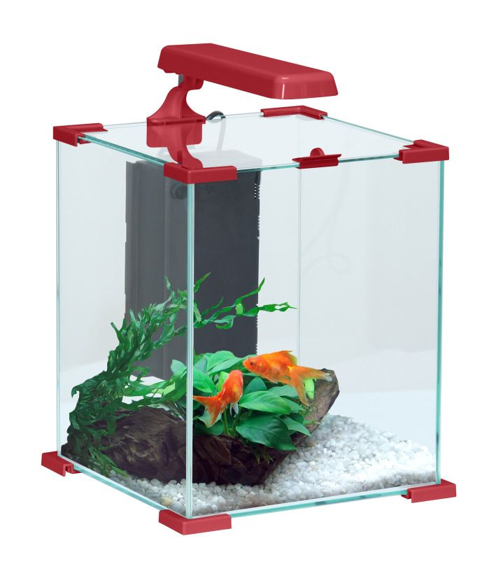 Aquarium Nanolife cuble 22 litres by Zolux