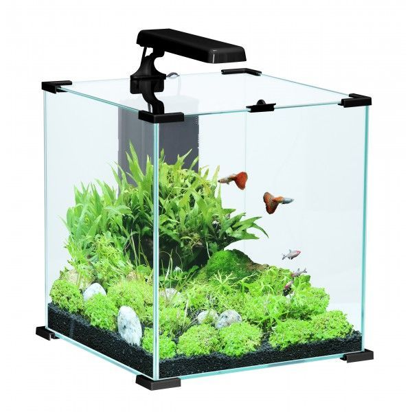 Aquarium Nanolife cube 51 litres by Zolux