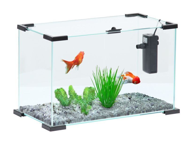 Aquarium Nanolife First sur Jardindeco