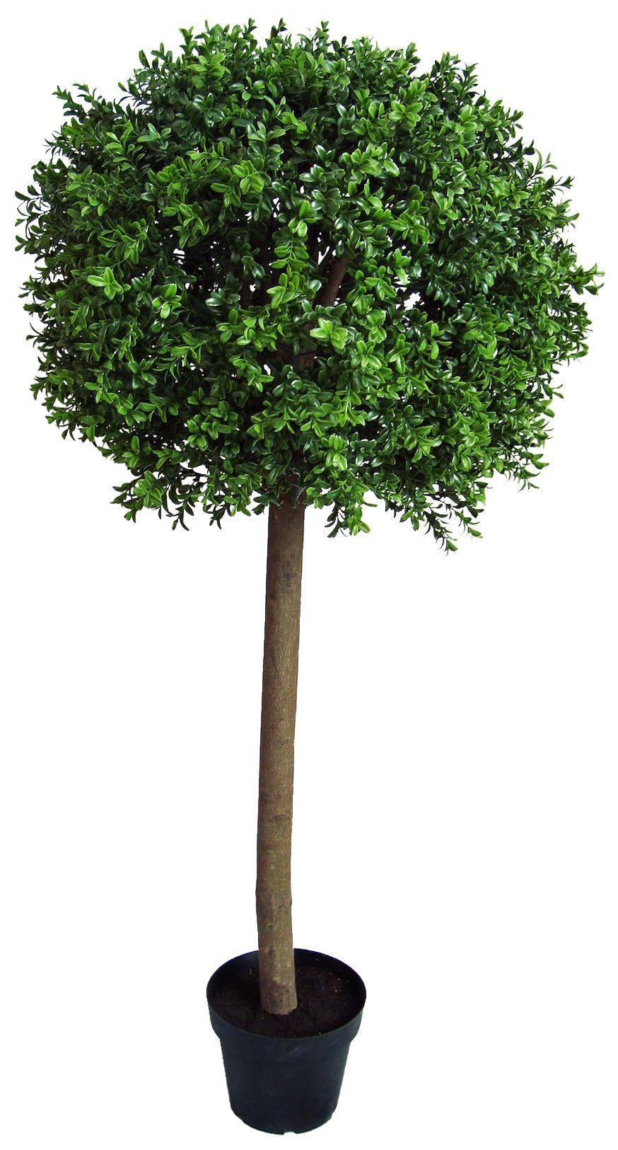 arbre boule de buis 120cm. Black Bedroom Furniture Sets. Home Design Ideas