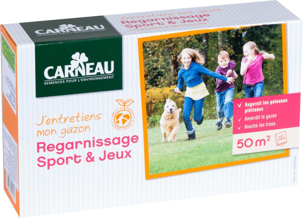 Gazon regarnissage sport sur Jardindeco