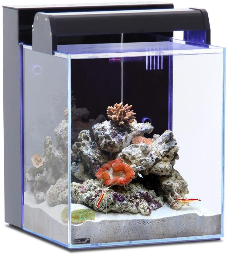 Aquarium nano eau de mer 40l blanche for Aquarium original pas cher