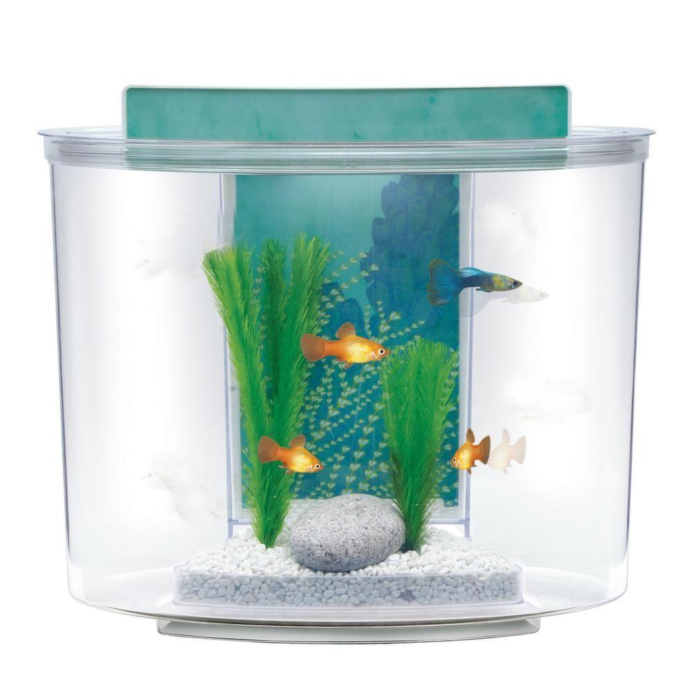 kit aquarium 15 litres pompe filtre eclairage. Black Bedroom Furniture Sets. Home Design Ideas