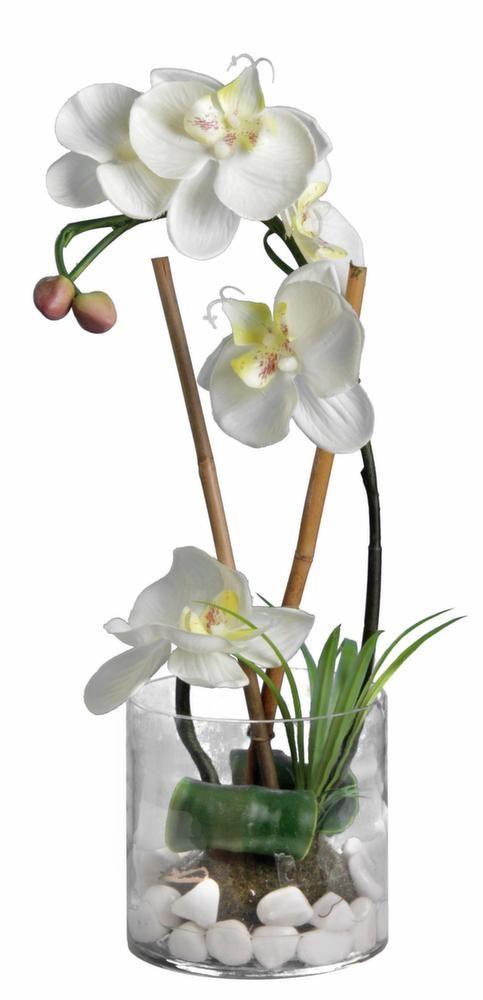 Orchidée blanche 36cm avec vase en verre
