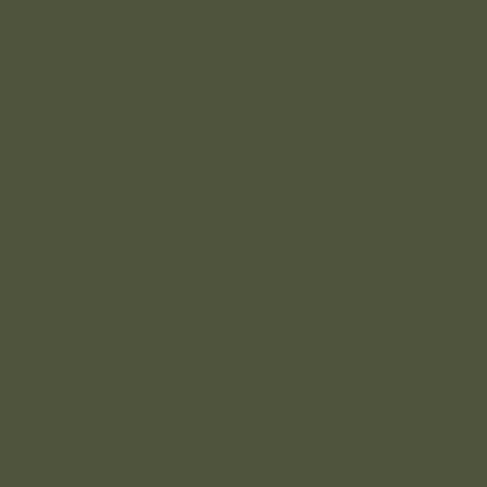 peinture vert olive pour meuble en bois brut 1 litre vert olive. Black Bedroom Furniture Sets. Home Design Ideas