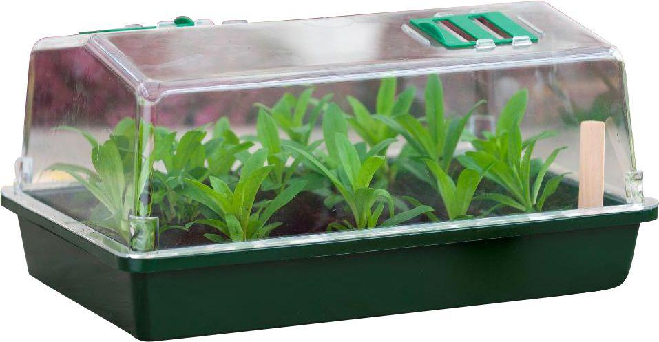 Petite serre semis et bouturage - Serre pour semis ...