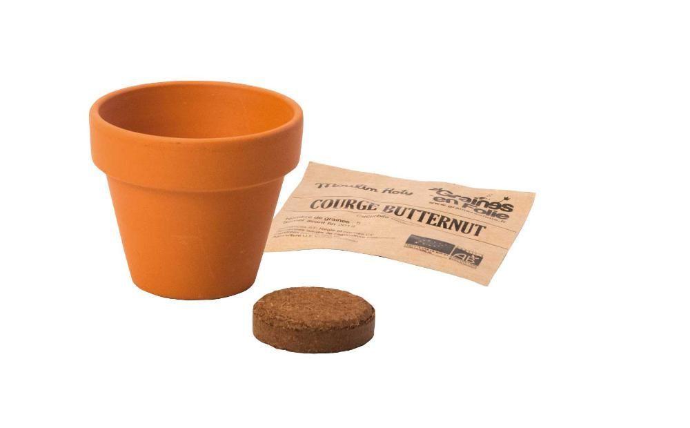Pot de graines pois de senteur ab - Arrosage basilic en pot ...