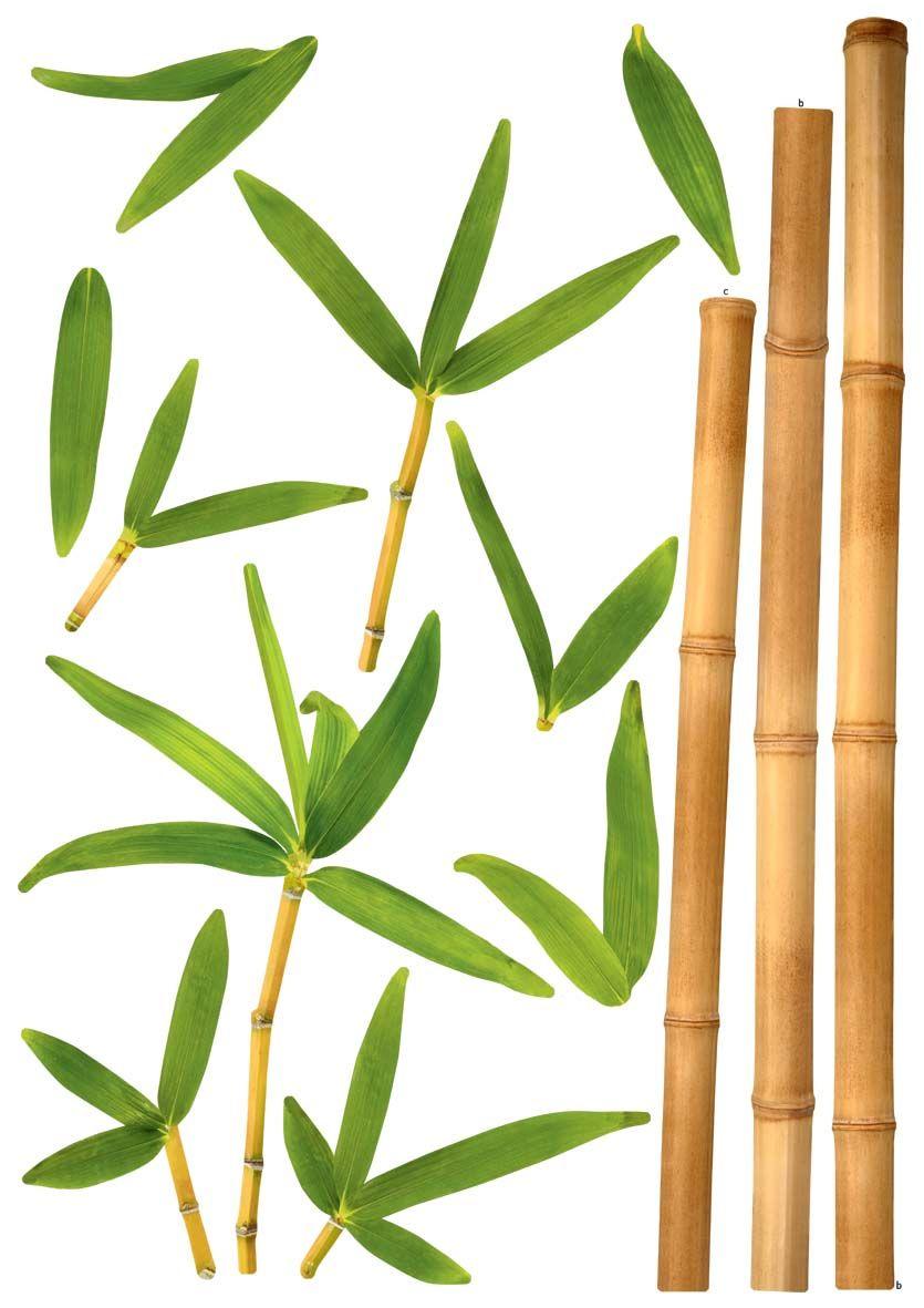 Stickers Muraux Bambou Noir – Oveetech.com