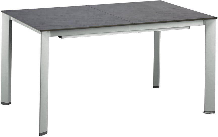 Table avec plateau effet ardoise et allonge 220 cm (argent, anthracite)