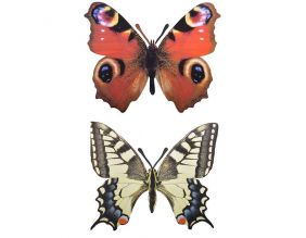 Décoration murale papillon (Lot de 2)
