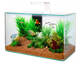 Kit aquarium Aqua clear 50 (Blanc)