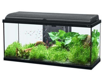 aquarium aquadream 90 litres blanc. Black Bedroom Furniture Sets. Home Design Ideas