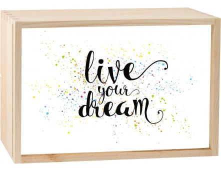 Boite lumineuse LED 30x20 cm (Live your dream)
