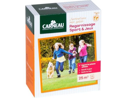 Gazon regarnissage sport (0,5 kg)
