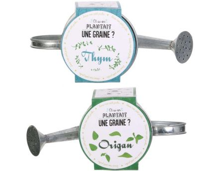 Graines à planter aromates avec arrosoirs (Lot de 2)