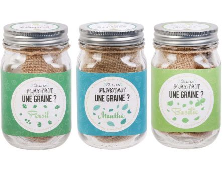 Graines à planter aromates mason jar (Lot de 3)