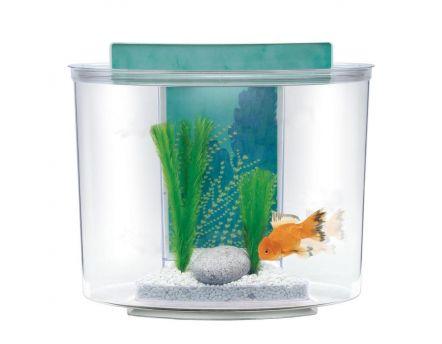 Kit aquarium boule plastique 8 litres for Filtre pour aquarium boule