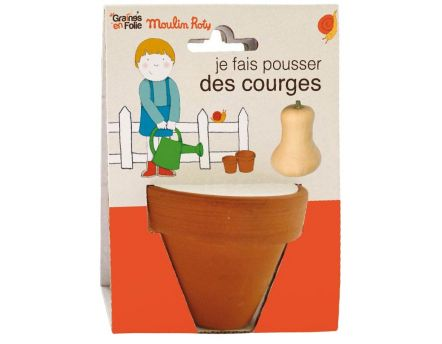 Pot de graines courge AB