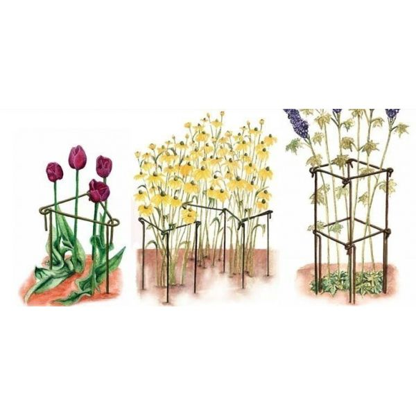 Support à plantes en acier (Lot de 6) - 9