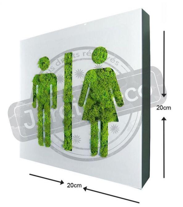 tableau v g tal picto homme femme en lichen stabilis 20cm. Black Bedroom Furniture Sets. Home Design Ideas