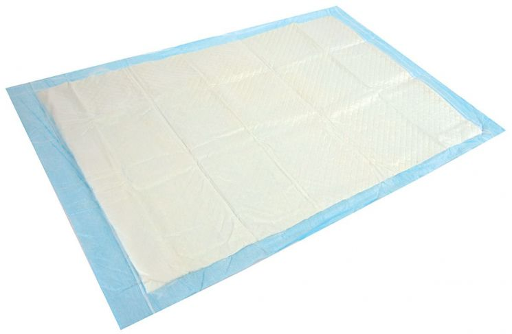 Tapis absorbant pour chiots (Lot de 10) - 6,90