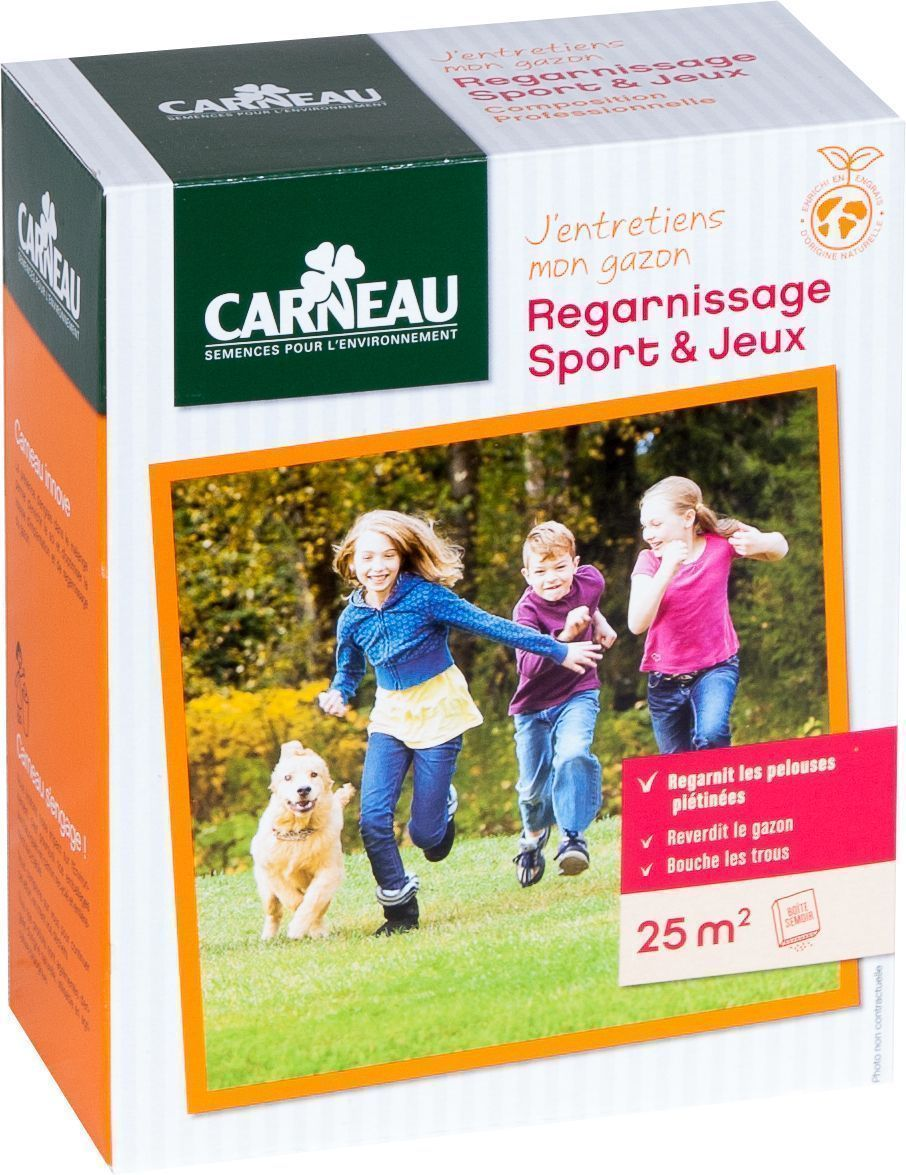 Gazon regarnissage sport 0,5 kg