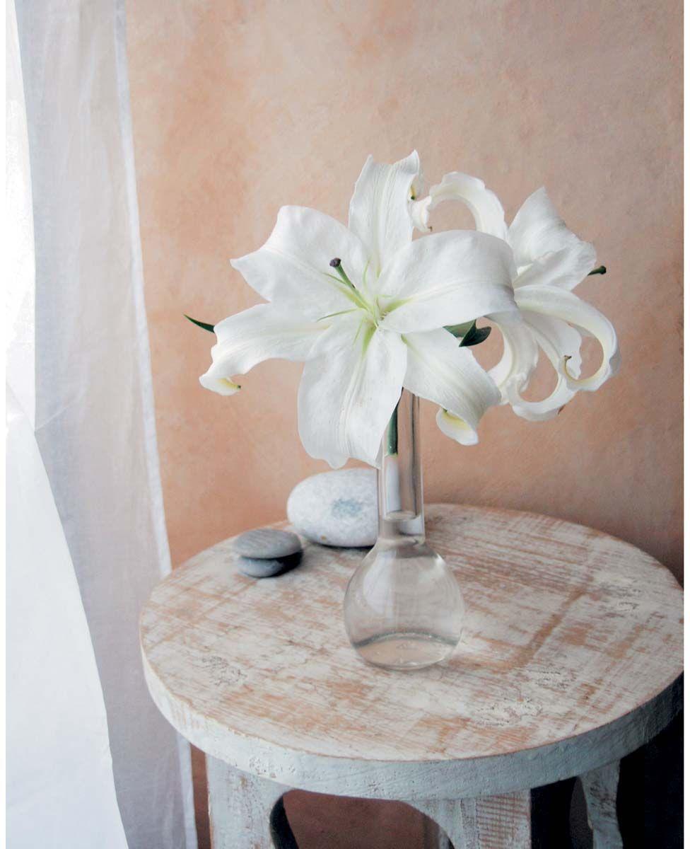 Affiche-Les-lys-blancs-A-Vuillon-40x50-cm